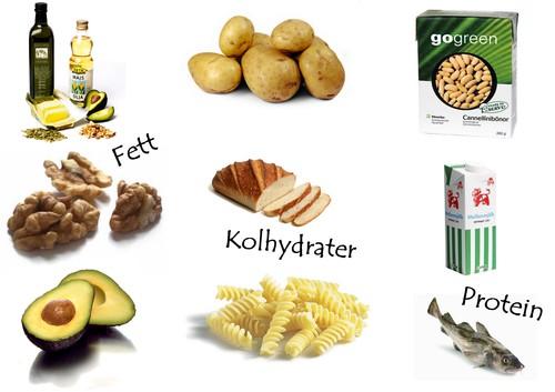 protein fett kolhydrater